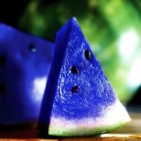 immagini-cose-curiose-anguria-blu