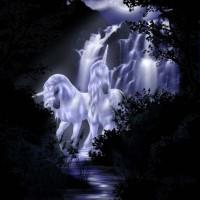 immagini-fantasy-unicorni
