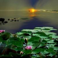 immagini-paesaggi-sfondi-lago